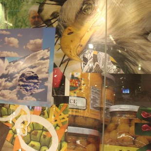 International Collage at Indianapolis International Airport